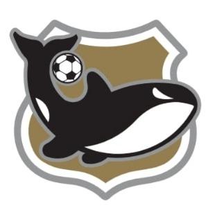 Escudo da equipe Meninos da Vila - São Miguel (B) - Sub 10
